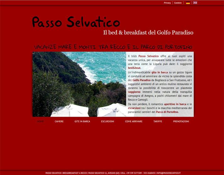 Creazione sito web Passo Selvatico: home page | Portfolio FAR