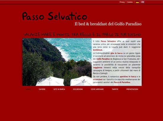 Creazione sito web B&B Passo Selvatico | Portfolio FAR